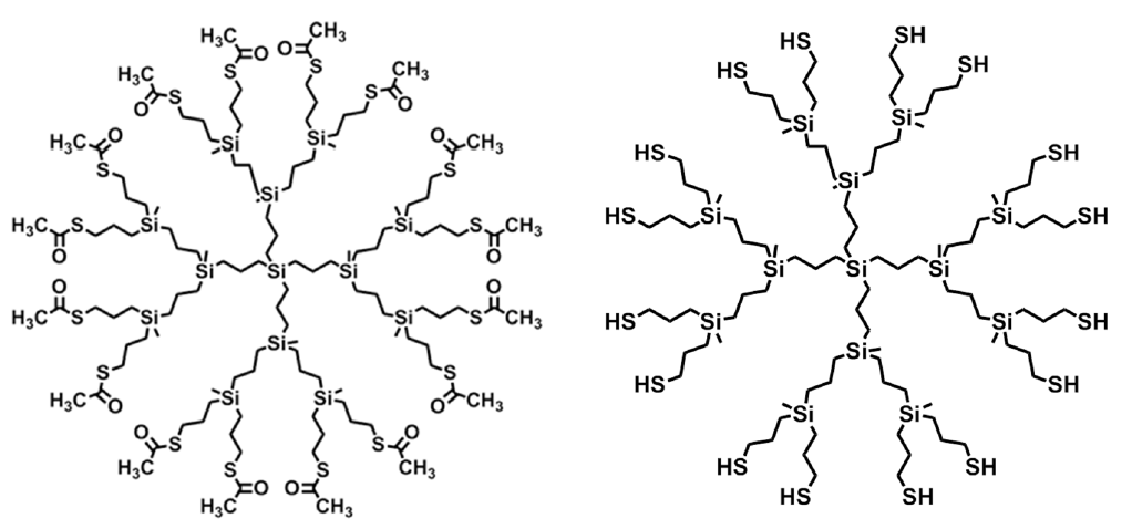 Carbosilane dendrimers with terminal thiol groups on their surface. Their preparation and their uses.