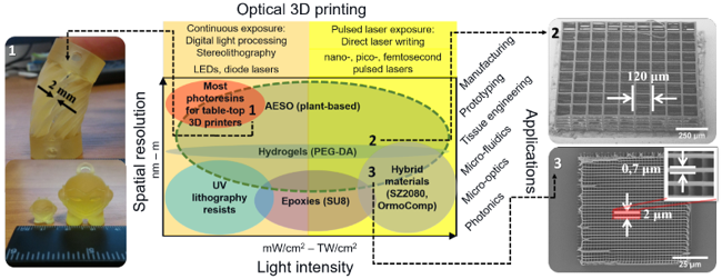 Optical 3D Micro- and Nano-formation of Bioplastics