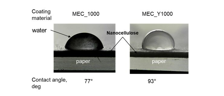 Hydrophobic nanocellulose for sustainable packaging