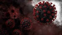 Fooling the Virus: A Fusion Protein as Virus-Specific Therapeutic