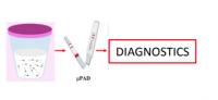 Diagnostic test for azoospermia origin