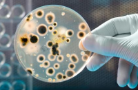 Seeking for bacteria detection method used in closed space