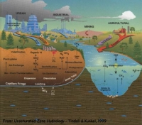 Contamination in Water Sources